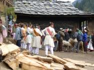 festival in parvati